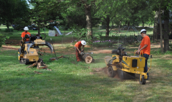 Arborscapes Tree Service Stump Grinding