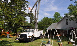 Tree Removal Services Midwest City OK