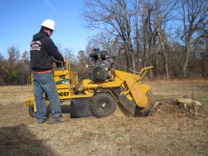 Arborscapes Stump Grinder