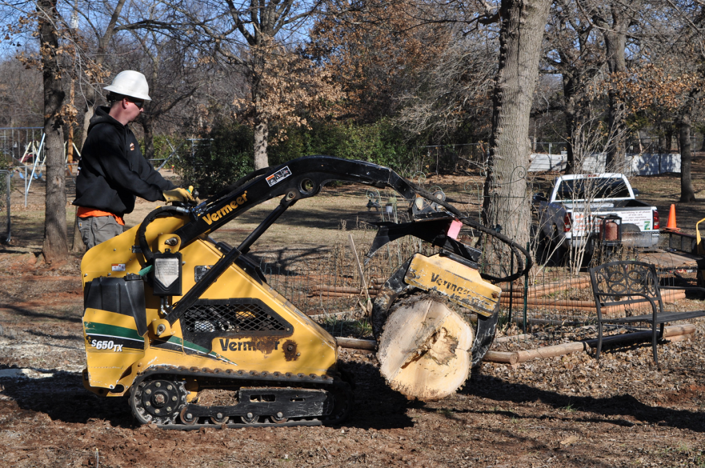 Arborscapes Tree Service Tree Removal Service