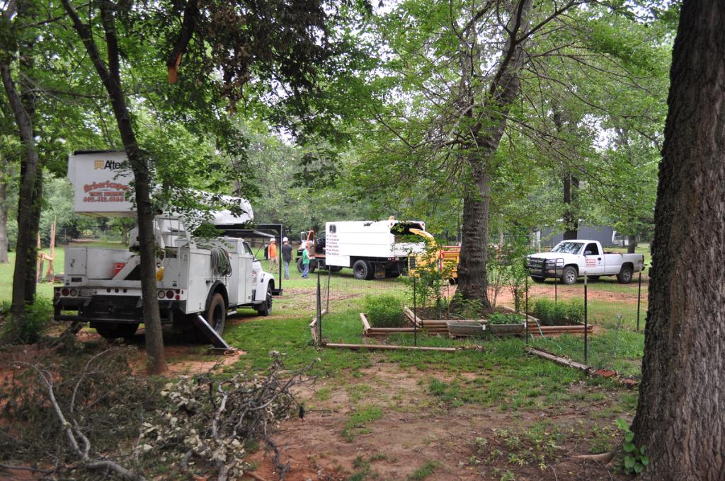 Tree Service Company Choctaw OK