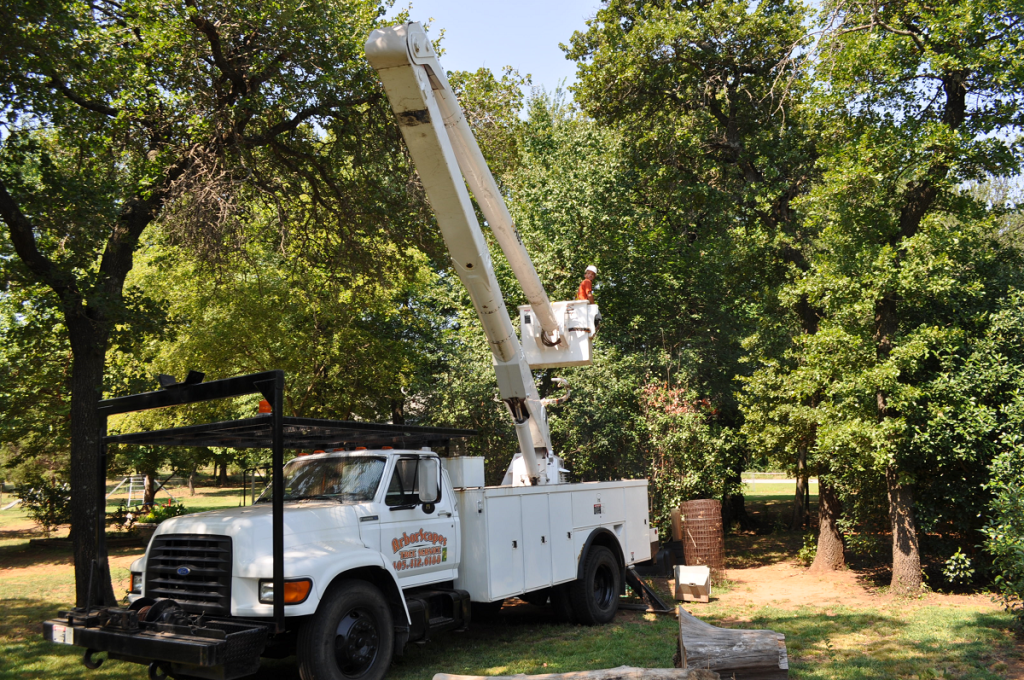 Tree Service Midwest City OK